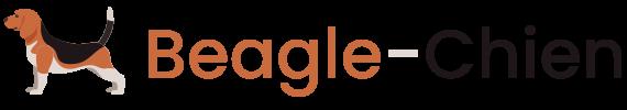 beagle-chien.fr